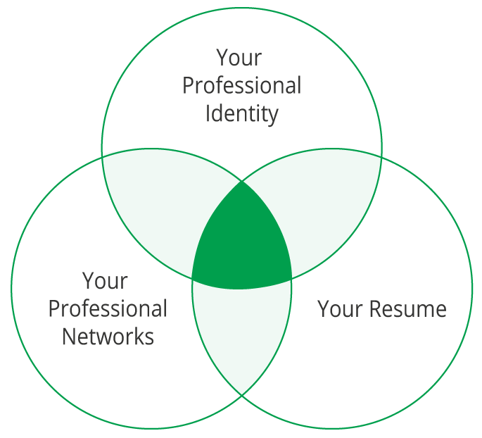 Your professional identity, Your professional networks, Your resume