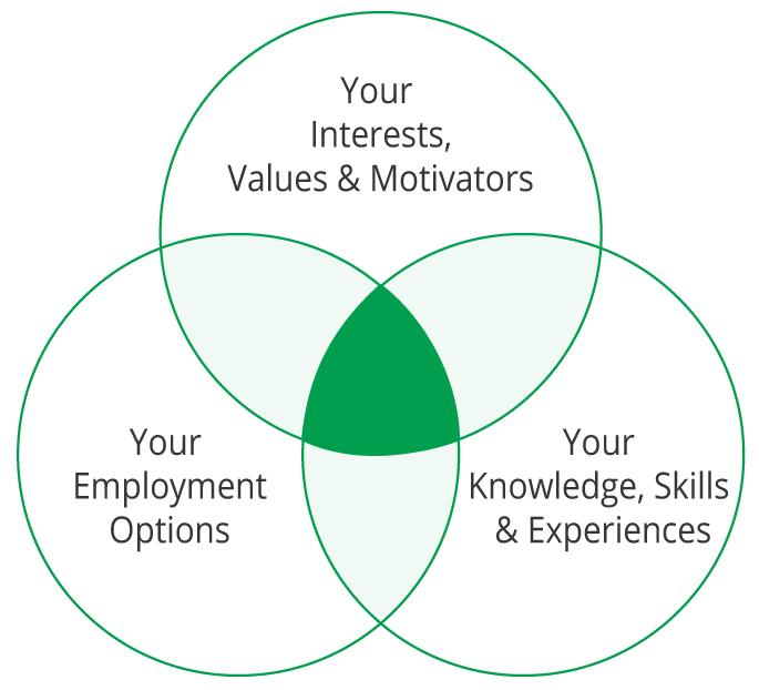 Your interests, values and motivators. Your employment options. Your knowledge, skills & experiences.